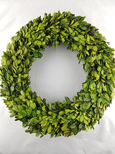 (Tradingsmith Preserved Boxwood Wreath 14 in. by)