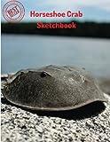 Horseshoe Crab Sketchbook: Blank Paper for