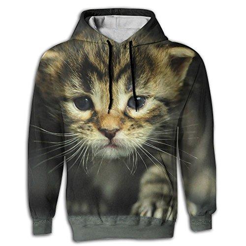 kitten dressed up - 1