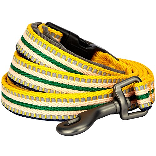 Blueberry Pet 8 Colors 3M Reflective Multi-Colored Stripe Dog Leash with Soft & Comfortable Handle, 4 ft x 1, Yellow & Green, Large, Leashes for Dogs