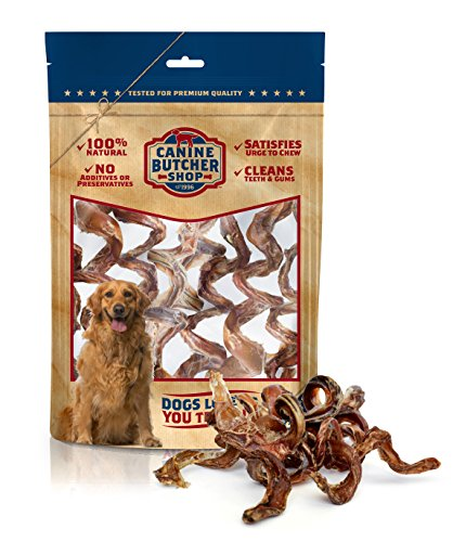 Canine Butcher Shop All Natural Bully Stick Spring Dog Chews, Made in USA, Odor Free, Single Ingredient, All-Natural Bull Sticks (Steer Stick Curlies) (Pack of 6)