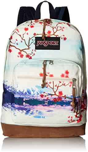 JanSport Men's Right Pack Expressions Backpack