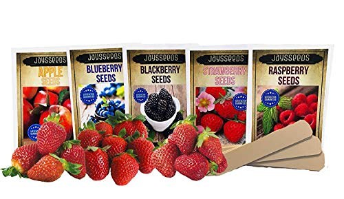 Fruit Combo Pack Raspberry, BlackBerry, Blueberry, Strawberry, Apple 685+ Seeds UPC 695928806980 & 3 Free Packs of Strawberry Seeds