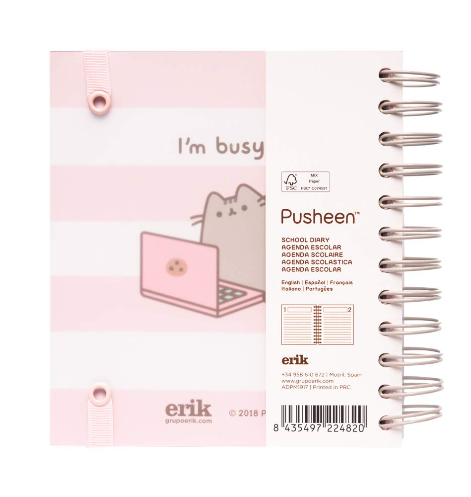 Amazon.com : Pusheen 2019-2020 Academic Diary, Organiser ...