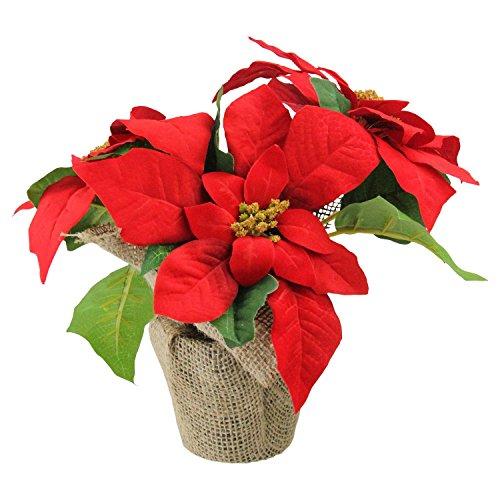 Artificial Poinsettia - Northlight Artificial Poinsettia Flower in Burlap Vase, Red