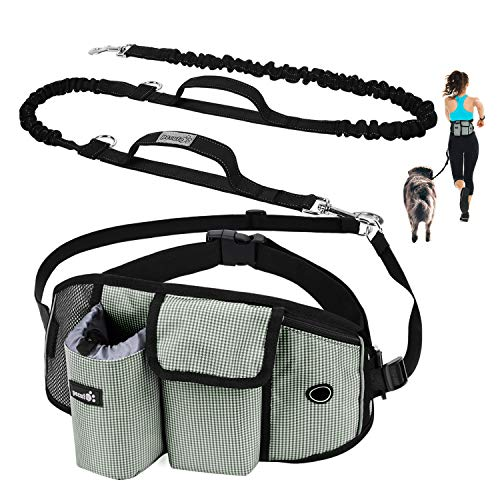 Pecute Hands Free Dog Leash with Pouch, Comfortable Shock Absorbing Bungee Dog Waist Leash for Running Walking & Jogging, Great for Medium & Large Dogs up to 220lbs, Reflective Stitches, Dual Handle
