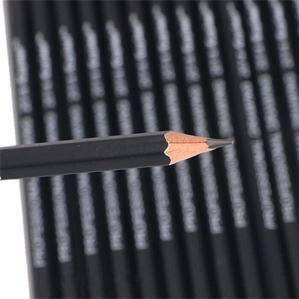 Set di matite da disegno 14matite da schizzo 12B 10B 8B 7B 6B 5B 4B 3B 2B B HB 2H 4H 6H per bambini adulti artisti principianti professionisti Scatola di carta nera, senza astuccio