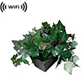 Spy Camera with WiFi Digital IP Signal, Recording & Remote Internet Access (Camera Hidden in Fake Plant)