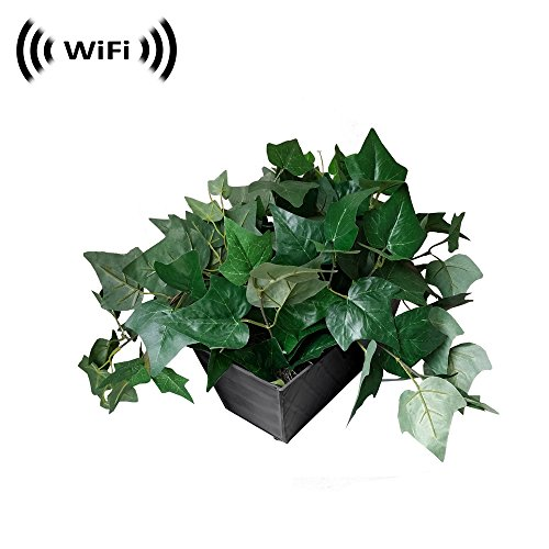 1080p IMX323 Sony Chip Super Low Light Wireless Spy Camera with WiFi Digital IP Signal, Recording & Remote Internet Access (Camera Hidden in a Fake Plant)