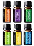 Pure Body Natural Essential Oils Set, 100% Pure Aromatherapy Diffuser Oils, Sample Kit for Beginners, Lavender, Tea Tree, Eucalyptus, Lemongrass, Orange, Peppermint - 10 Milliliter (6 Count)