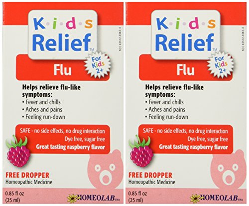 Medicine Flu Homeopathic (Homeopathic Medicine Kids Relief Flu, 25 ML (2pack))