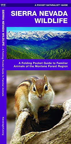 Sierra Nevada Wildlife: A Folding Pocket Guide to Familiar Animals of the Montane Forest Region (Wildlife and Nature Identification)