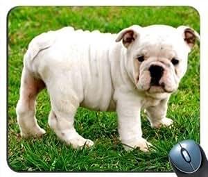 English Bulldog v4 Mouse Pad
