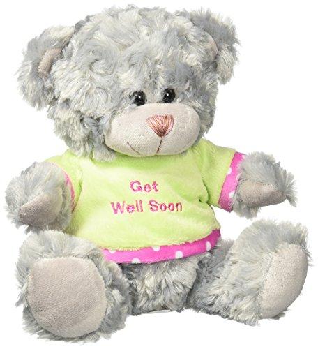 Animals That Begin With W (Koehler 10016048 8.25 inch Gray Get Well Soon Plush Bear)