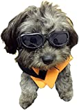 Enjoying Waterproof Sunglasses Goggles For Cat or Small Dogs