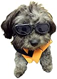 #9: Enjoying Dog Goggles - Small Dog Sunglasses Waterproof Windproof UV Protection For Doggy Puppy Cat - Black
