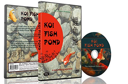 Buy special dvd relaxation dvd koi fish pond with for Baby koi fish for sale cheap