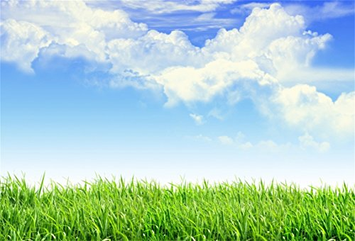 CSFOTO 7x5ft Background for Blue Sky Green Meadow Photography Backdrop Spring Summer Scence Natural Scenery Fresh Air Outdoors White Clouds Holiday Tour Vacation Photo Studio Props Wallpaper