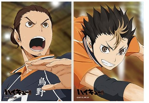 [Haikyuu!! Pictures Toho Nishitani Jump Festa 2015 limited New From Japan] (Festa In Costume Film)