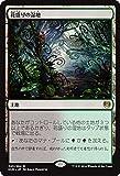 マジック・ザ・ギャザリング 花盛りの湿地(レア) / カラデシュ(日本語版)シングルカード KLD-243-R