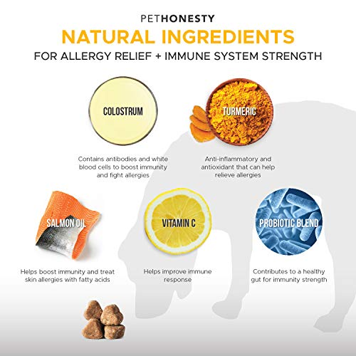 Allergy Relief Immunity Supplement for Dogs - Omega 3 Salmon