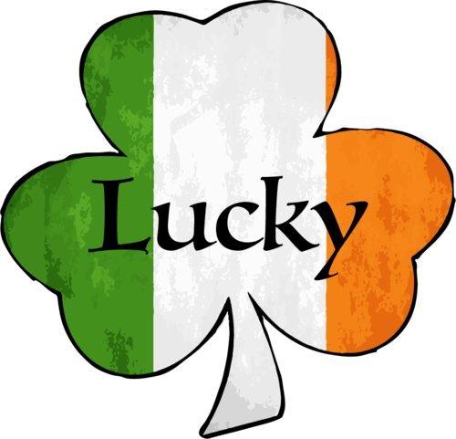 Sticker Bumper Heritage - WickedGoodz Lucky Shamrock Vinyl Window Decal - Irish Bumper Sticker - Perfect Celtic Heritage Gift