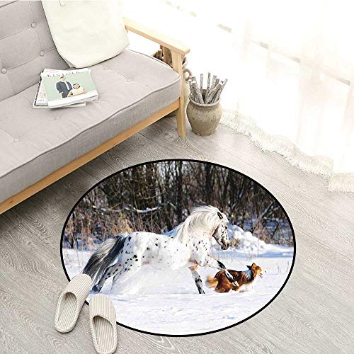 (Horses Bedroom Rugs Legendary Appaloosa Pony and Sable Border Collie Runs Gallop in Winter Photo Print Super Absorbs Mud 2'3