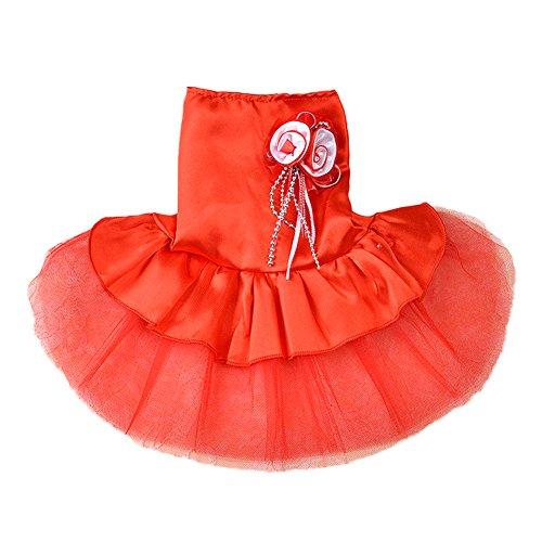 ACTLA (Satin Lace Costumes)