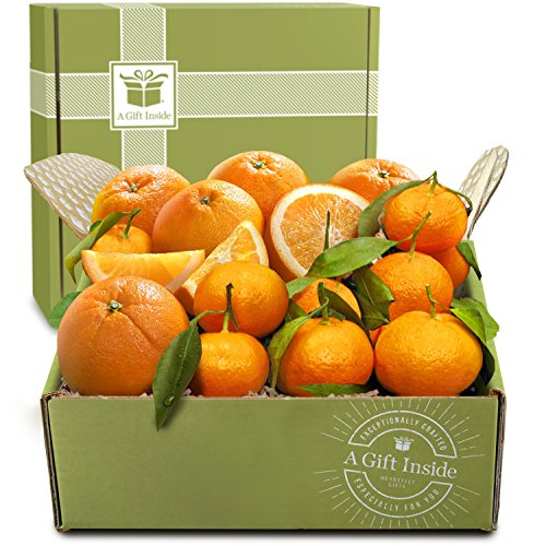Golden State Fruit Citrus Duet Gift Fruit Box