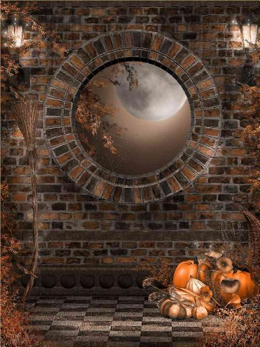 GladsBuy Cold Stone 5' x 7' Computer Printed Photography Backdrop Halloween Theme Background DGX-134