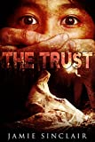 The Trust: A Detective Inspector Ashton Novel
