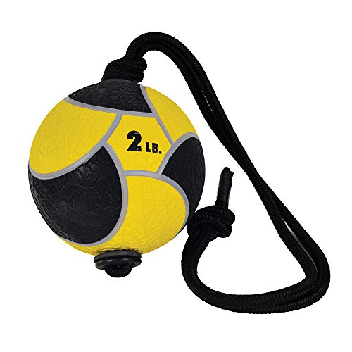 Power Systems Power Rope Medicine Ball (Yellow, 2-Pounds)