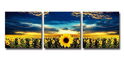 HappyHouseArt 3 Panel Wall Art on Canvas Sunflower Painting for Décor No Frame