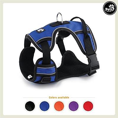Pets&Partner® Arnés Outdoor Reflectante, XL, Azul: Amazon.es ...