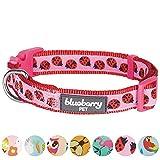 Blueberry Pet 7 Patterns Ladybug Designer Basic Dog Collar, Small, Neck 12''-16'', Adjustable Collars for Dogs