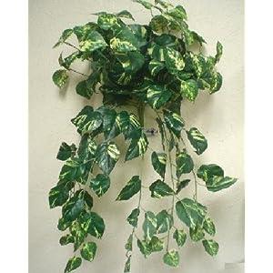 "Phoenix Silk POTHOS Leaves Hanging Bush 25"" Artificial Silk Plants 9KA-PO 64"