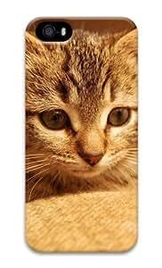 Cute cat 2 3D Case retro iphone 5S cases for Apple iPhone 5/5S