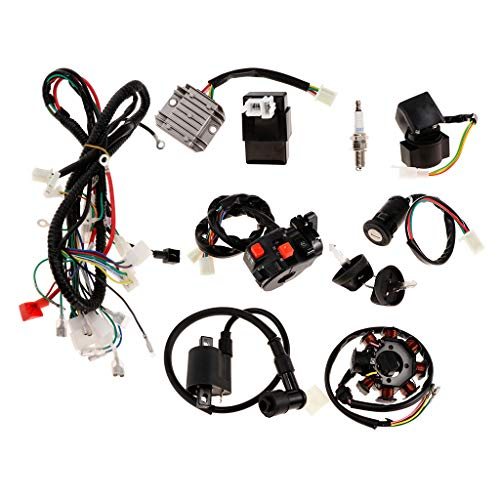 D DOLITY Wiring Harness Loom CDI Ignition Coil Spark Plug Rectifier Key Switch Kit for 150cc 250cc ATV Dirt Bike: