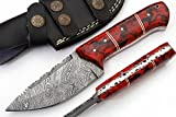 SharpWorld Beautiful Damascus Knife Made Of Remarkable Damascus Steel and Exotic Handle -Best Hunting Knife With Sheath TJ102 (Red Resin) Review