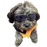 Enjoying Enjoying Dog Goggles - Small Dog Sunglasses Waterproof Windproof UV Protection for Doggy Puppy Cat - Black