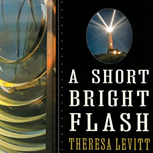A Short Bright Flash Audiobook