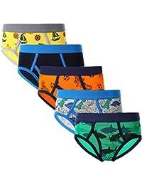 Little Boys' Dinosaur Underwear Briefs 5-Pack