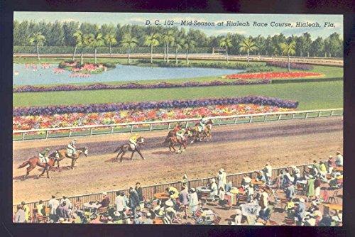 linen horse postcard c.t. art colortone mid season HIALEAH race track from LINEN