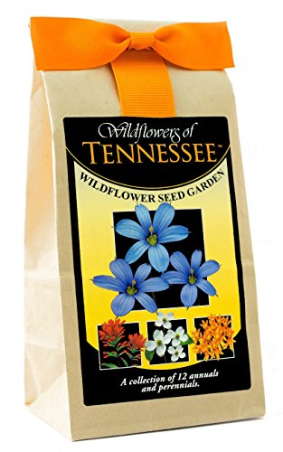 - Tennessee Wildflower Seed Mix - A Beautiful Collection of Twelve Annuals & Perennials - Enjoy The Natural Beauty of Tennessee Flowers in Your Own Home Garden