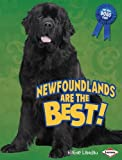 Newfoundlands Are the Best! (Best Dogs Ever)