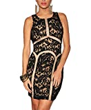 made2envy Lined Lace Overlay Vintage Sleeveless Dress