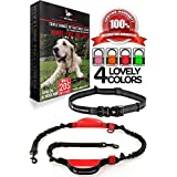 Pet Dreamland Hands Free Leash - For One/Two Medium to Large Dogs (up to 150lbs) - Running/Hiking/Dog Training - Heavy Duty Extra Long Bungee Lead - Waist Leashes for Dogs (One Dog, Black & Red)