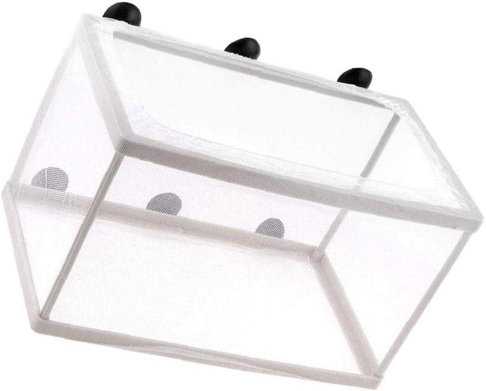 Aquarium Fish Allevatore Box isolanti Allevatore Hatchery Incubatore Separazione rete bianca