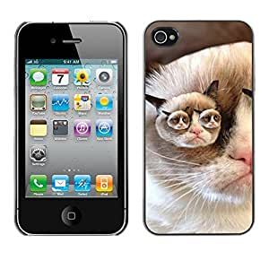 Vortex Accessory Carcasa Protectora Para APPLE iPHONE 4 / 4S - Grumpy Cat Pink Nose Shorthair Funny -