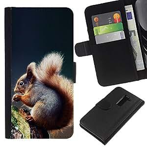 LG G2 D800 - Dibujo PU billetera de cuero Funda Case Caso de la piel de la bolsa protectora Para (Cool Squirrel)